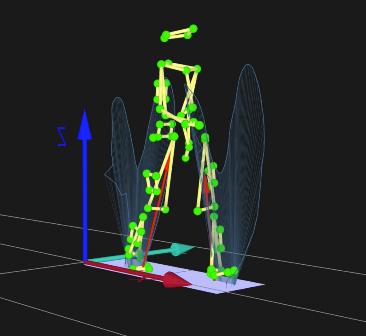 visual,3D,human,gait,update